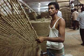 ترس و نگرانی نسبت به بحران جوت در بنگلادش