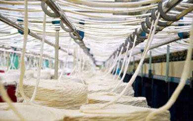 Ethiopia approves import of pest-resistant improved cotton variety