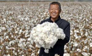 صنعت پنبه در چین