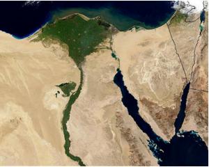 افزایش 30 درصدی تولید پنبه در مصر